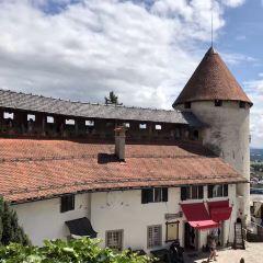 Bled Castle (Blejski Grad) User Photo