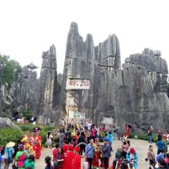 Stone Forest User Photo