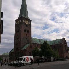 Århus Domkirke User Photo