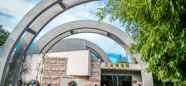 Beijing Zoo3