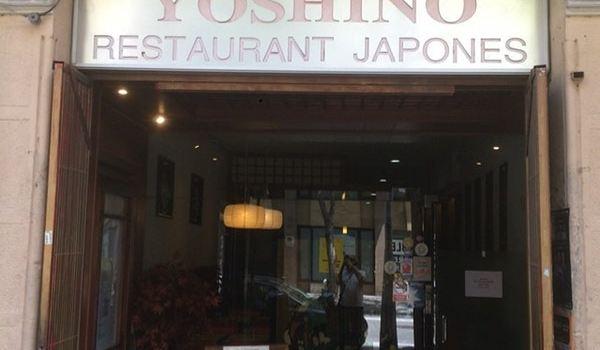 Yoshino3