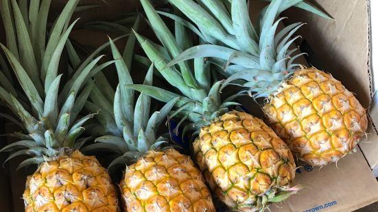 Hawaiian Crown Plantation