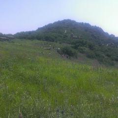 Yesanpo White Grass Scenic Area User Photo