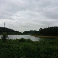Foling Lake Country Park User Photo