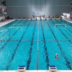 De Tongelreep Swimming Paradise用戶圖片