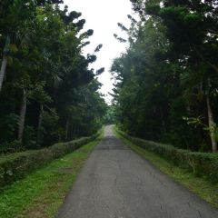 Kenting National Forest Recreation Area User Photo