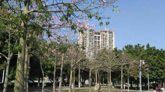 Jiaxing Park