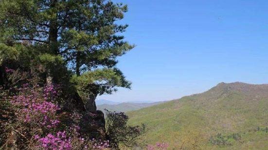 清河林業局懸羊嶺風景區
