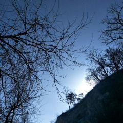 靈鷲峰用戶圖片