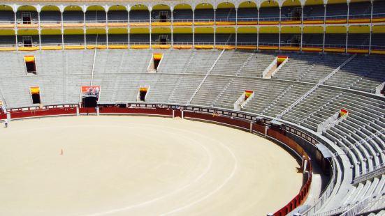 馬德里體育館