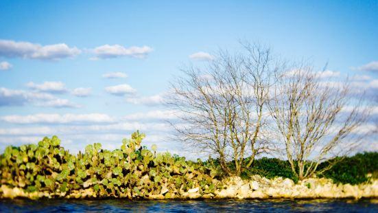 布勞尼格湖