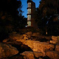 Thousand Lantern Lake Park User Photo