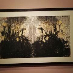 Yang Art Museum User Photo