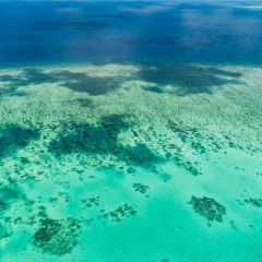 大堡礁直升機公司用戶圖片