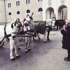 Salzburger Residenz User Photo