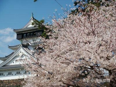 가쓰야마공원