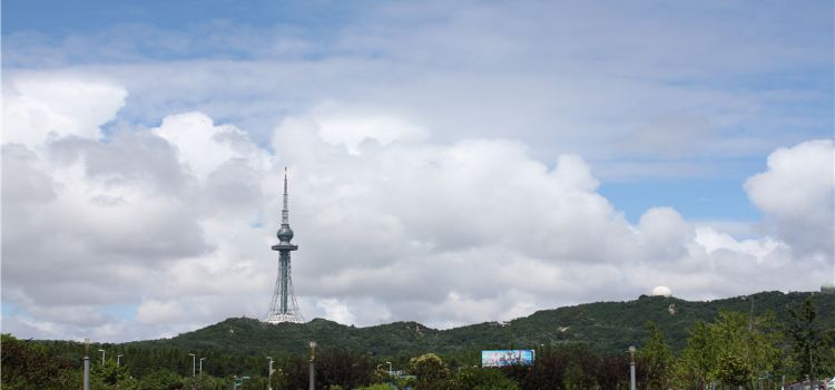 칭다오 TV 타워3