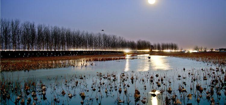 運河濕地公園3