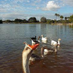 Parque da Cidade Sarah Kubitschek User Photo