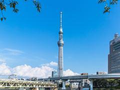 探访《东京家族》东京取景地行程路线