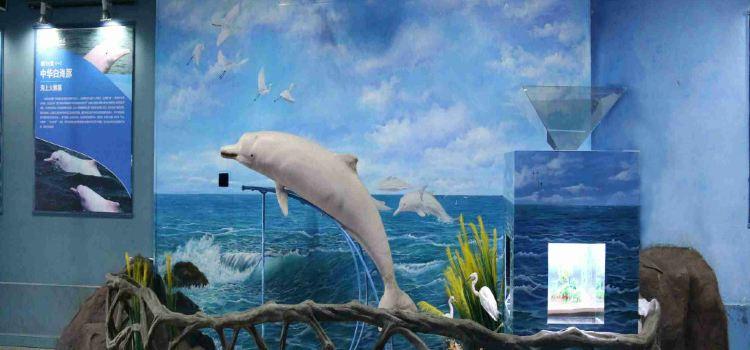 샤먼 해저세계3