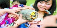 蝴蝶花卉文化艺术节-武汉-AIian