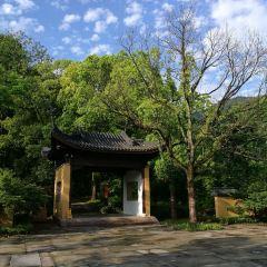 靈峰山景區用戶圖片