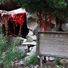 賀蘭山國家森林公園用戶圖片