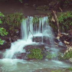 百丈滝のユーザー投稿写真