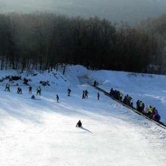 五家山滑雪場用戶圖片