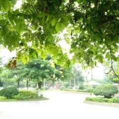 Donghu Wetland Park User Photo
