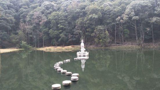 寶臺山國家森林公園