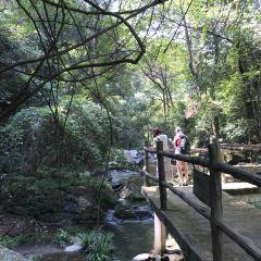 Wuyi Hotspring Resort User Photo