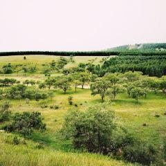 多倫湖景區用戶圖片