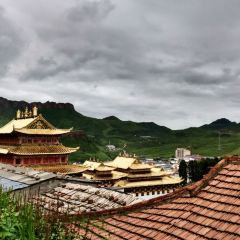 甘丹賽赤寺用戶圖片