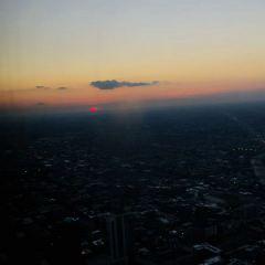 윌리스 타워 여행 사진