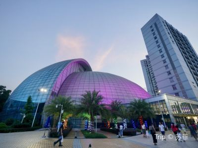 Guangdong Performing Arts Center Grand Theatre