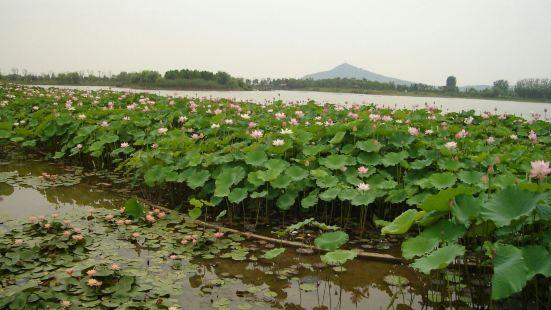 長興仙山湖景區-荷博園