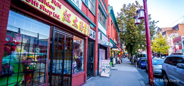 Vancouver ChinaTown3