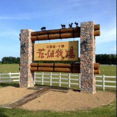 花畑牧場用戶圖片