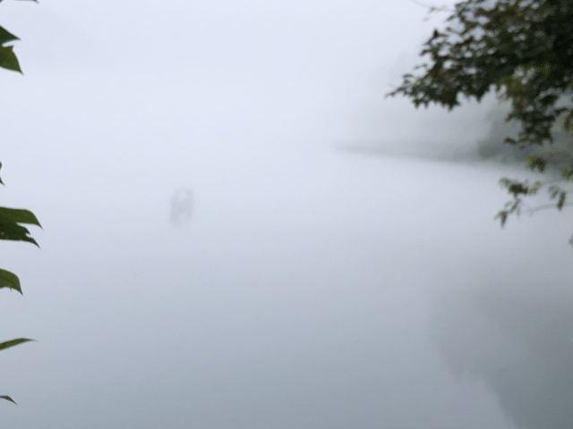 圓夢東江湖