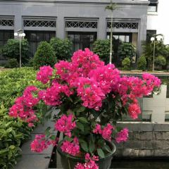 Tianyou Grand Hotel Spring User Photo