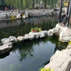 Jiunv Spring User Photo