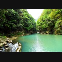 麻陽河自然保護區用戶圖片
