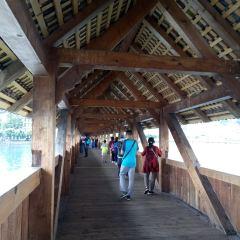 Chapel Bridge and Water Tower User Photo