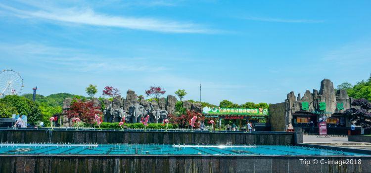 창사 생태 동물원3