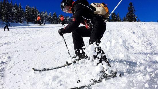 地下畫廊滑雪場
