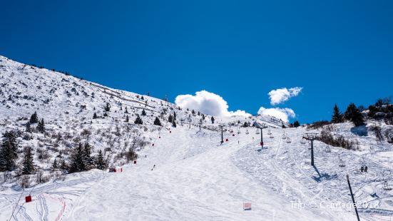 大別山南武當滑雪場