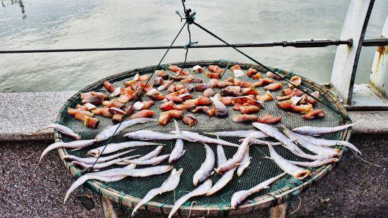 中廟水韻漁家特色湖鮮飯店