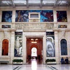 底特律美術館用戶圖片
